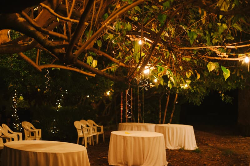 Viana do Castelo rustic wedding 106