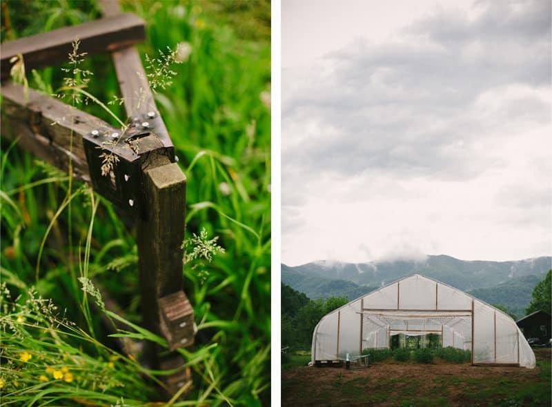 019 wedding photographer asheville north carolina