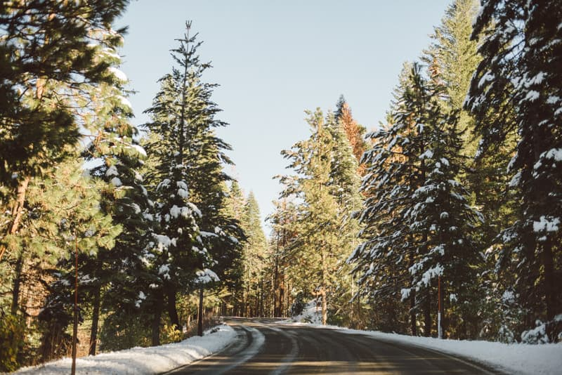 Yosemite (21 of 59)