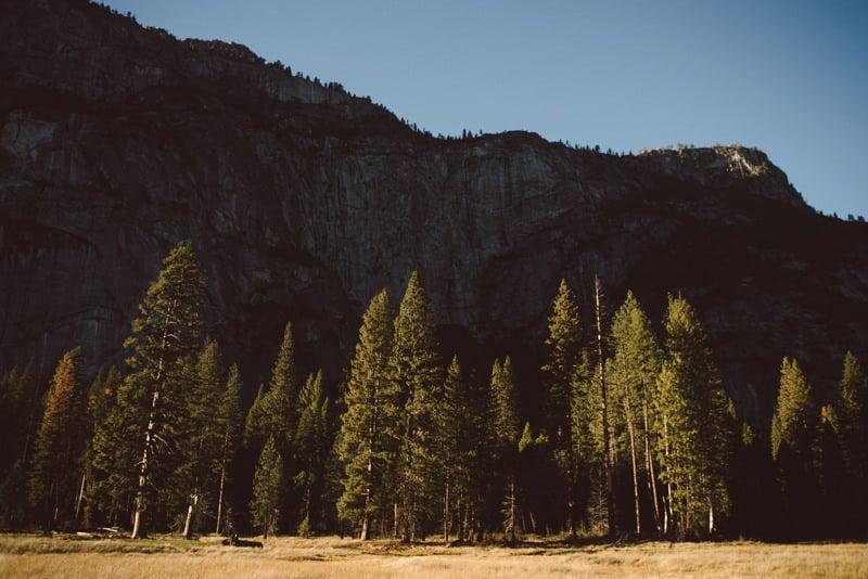 Yosemite (48 of 59)