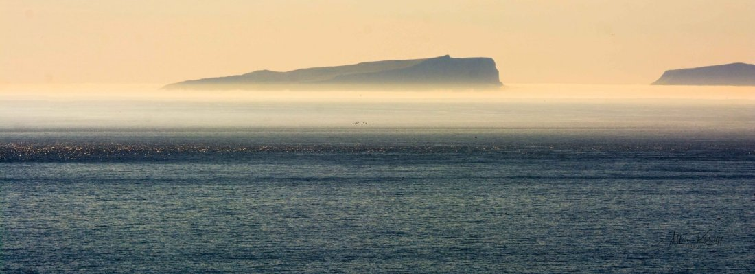 Mykines 7 10 - Tur til Mykineshólmur Lighthouse