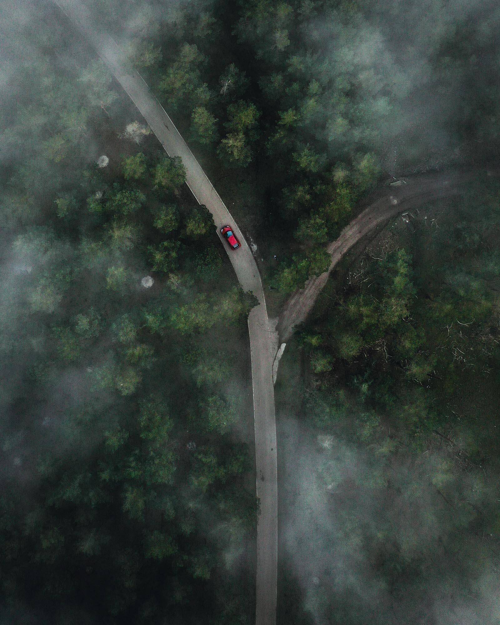 Bosque con niebla desde drone - Linzex
