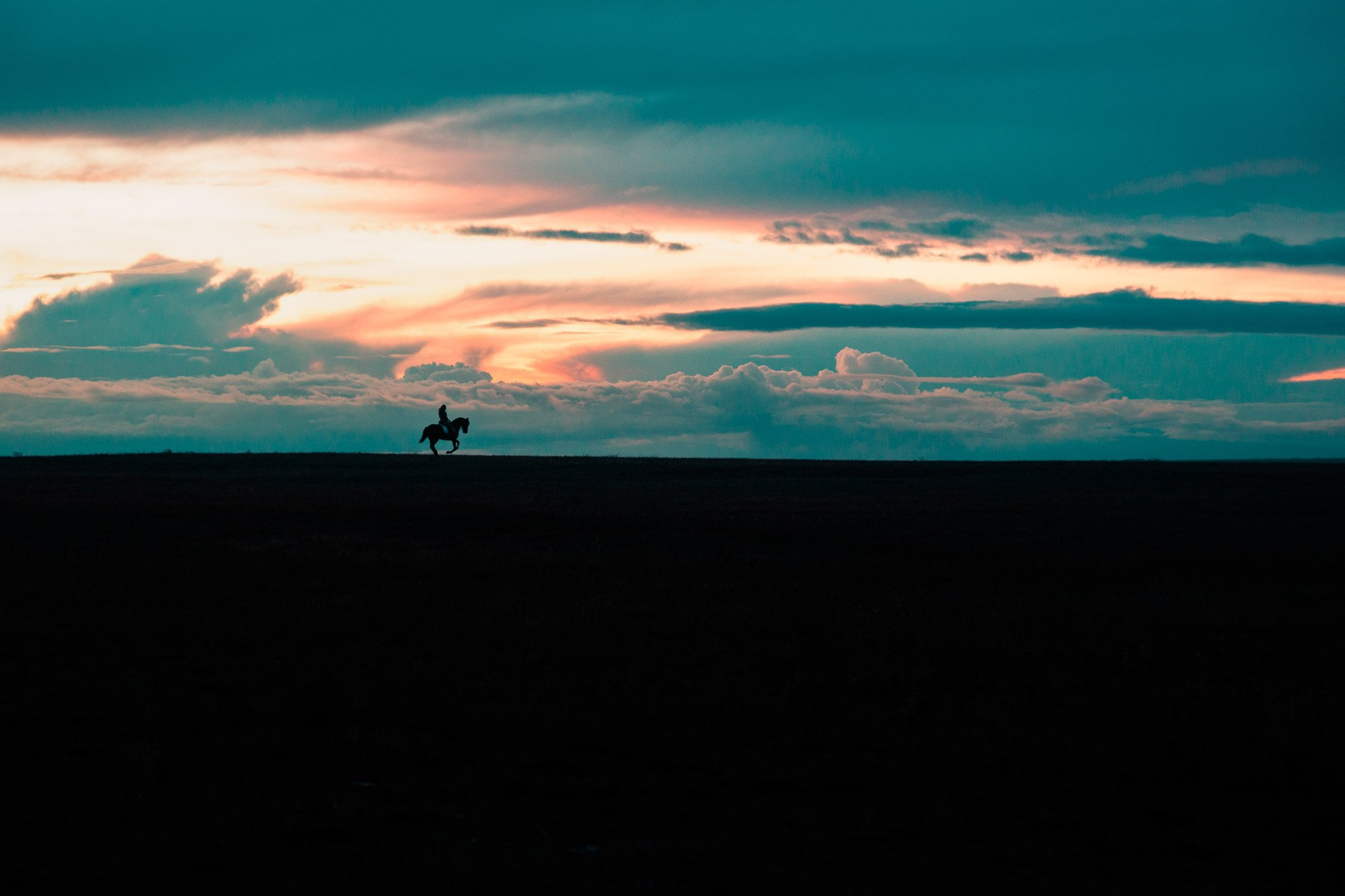 Atardecer caballo - Linzex