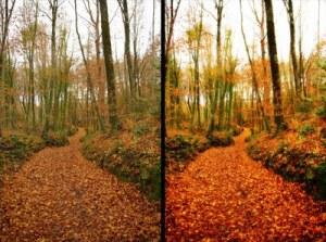 effetto orton in photoshop