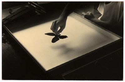 Yamamoto Masao fotografia in bianco e nero giapponese