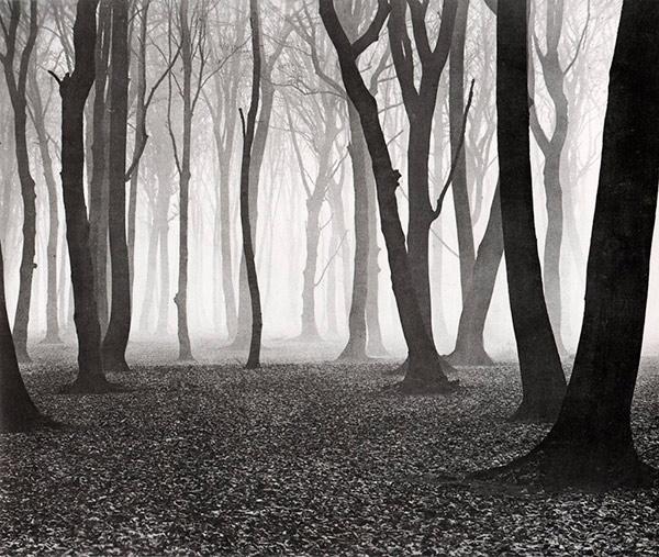 fotografia bianco e nero ampia gamma dinamica