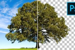 Come SCONTORNARE qualsiasi cosa in modo facile in Photoshop CC con intervallo di colori
