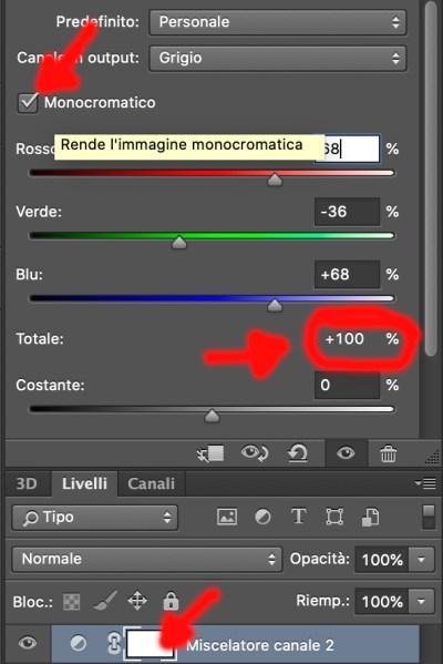 miscelatore canali bianco e nero foto fotografia con photoshop