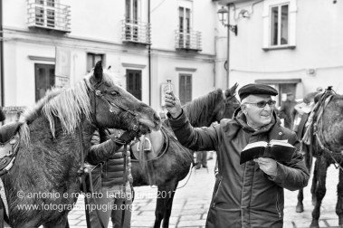 Rotondella (MT) La benedizione degli animali nella piazza del paese, la mattina del 17 gennaio 2017