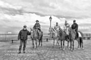 Rotondella (MT) Un gruppo di cavalieri provenienti da Pisticci (MT)