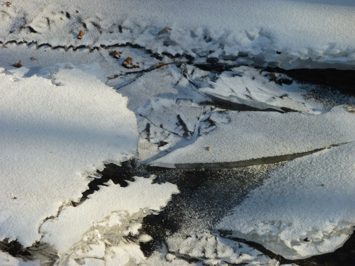 Zerbrochene Eisschollen