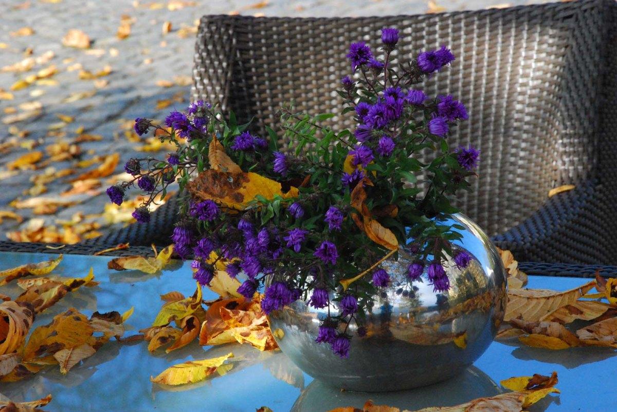 am Günderodehaus Idylle des Herbstes