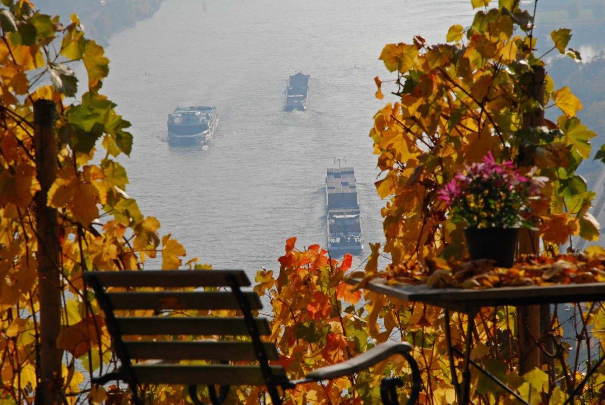 Terrasse am Günderodehaus Blick auf den Rhein - Wanderschnecken auf dem Rheinburgenweg