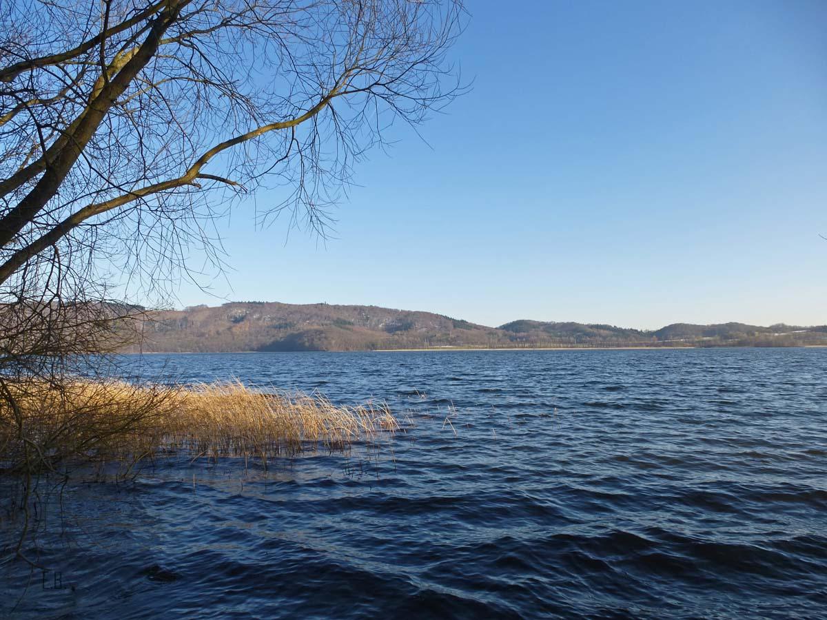 Vulkanlandschaft im Laacher See (109)