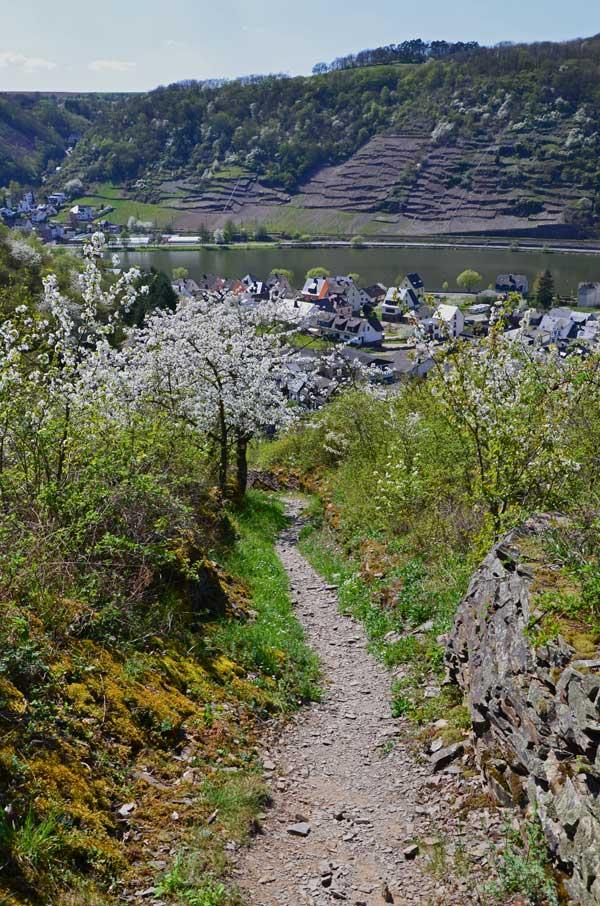 Über einen sehr steilen, schmalen Weg führt mich der Weg zum Ausgangspunkt zurück.