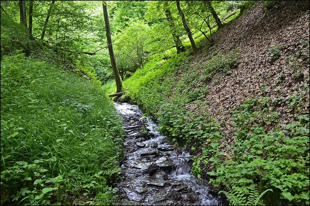 Uns erstaunt, dass so ein harmlos dahiin fließendes Gewässer zu solchen Wassermengen summieren kann, dass ein Wasserfall daraus entsteht.