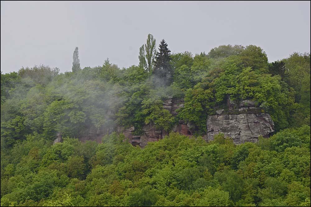 Kasteler Felsenpfad (90)
