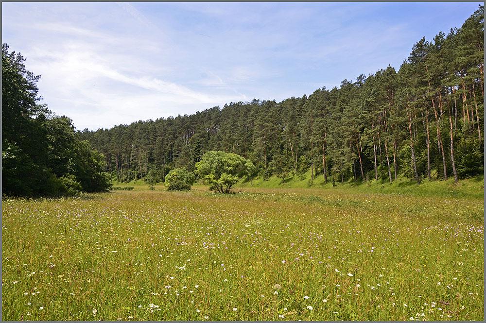 Durch das wilde Lampertstal zum Kalvarienberg und Burgruine Dollendorf