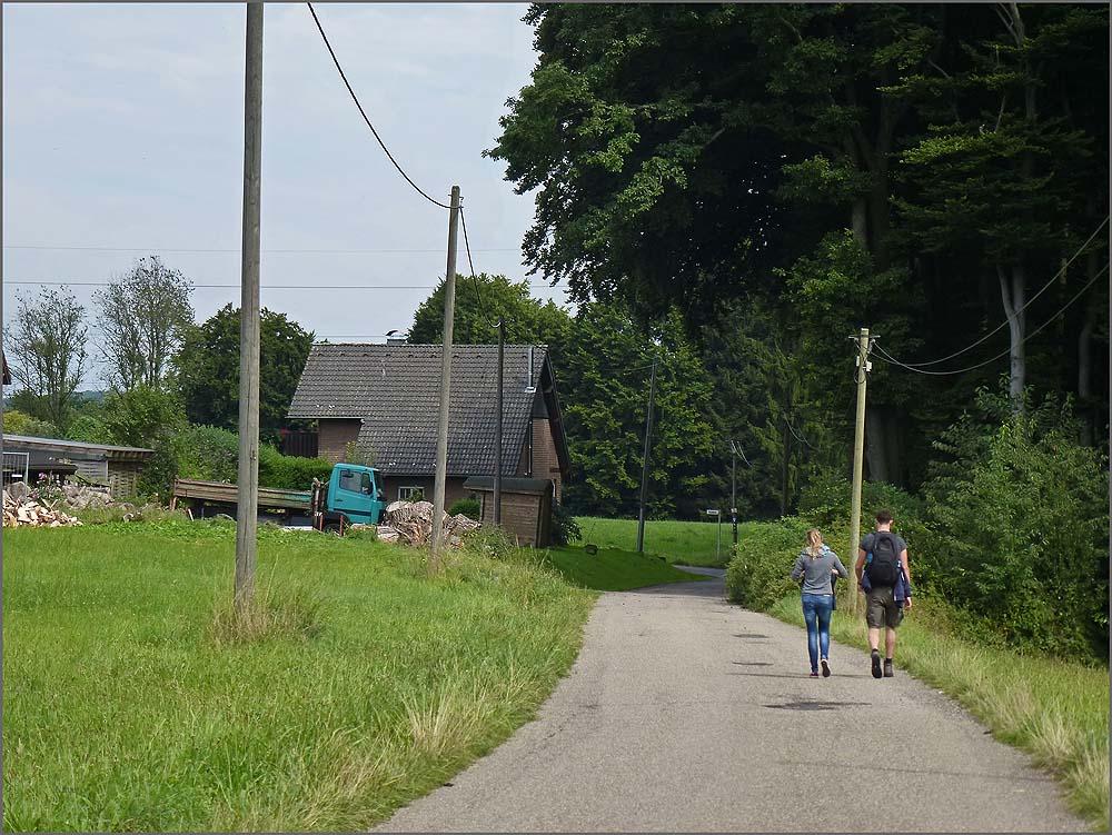 Ein Teerweg Richtung einer Hofanlage