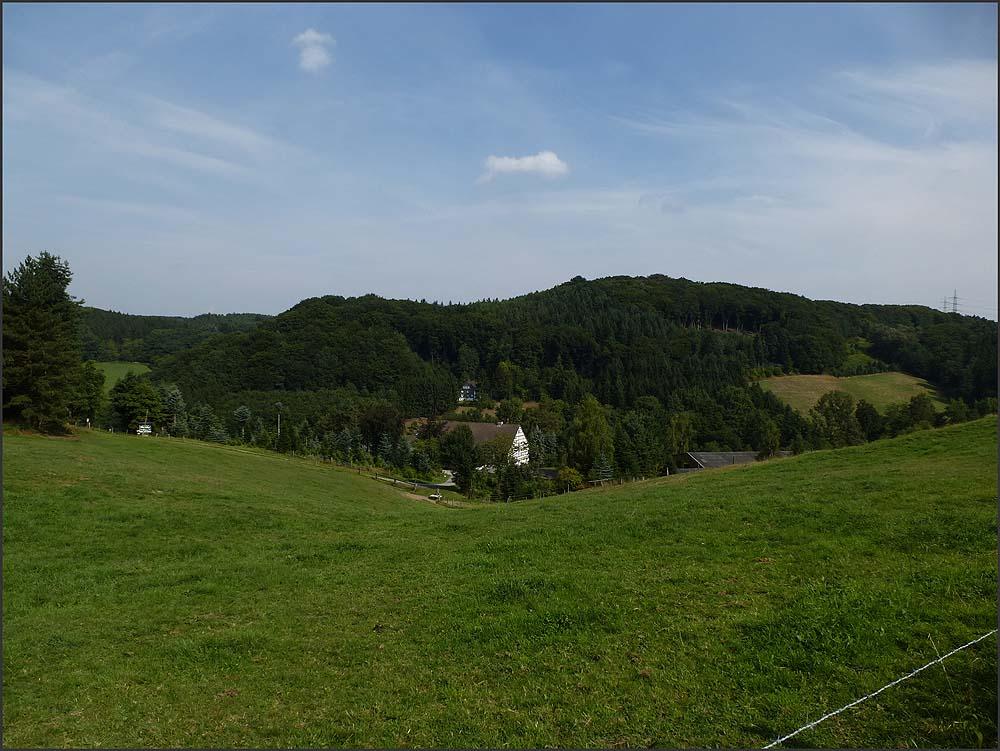 Felderbachtal (16)