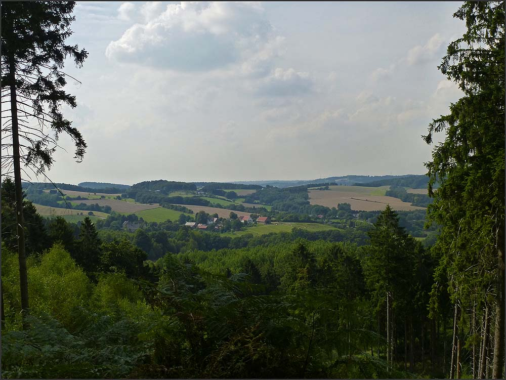 Felderbachtal (52)
