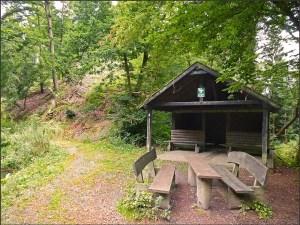 Waldschluchtenpfad (77)