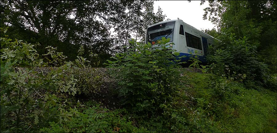 Und einen näheren Blick auf die Rurbahn konnte ich auf der Zielgeraden Richtung Gut Kallerbend auch noch erhaschen.