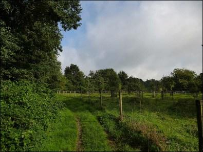 Mühlenweg2 (13)
