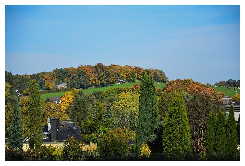 Herrliche Herbstfarben auf der Kuppe