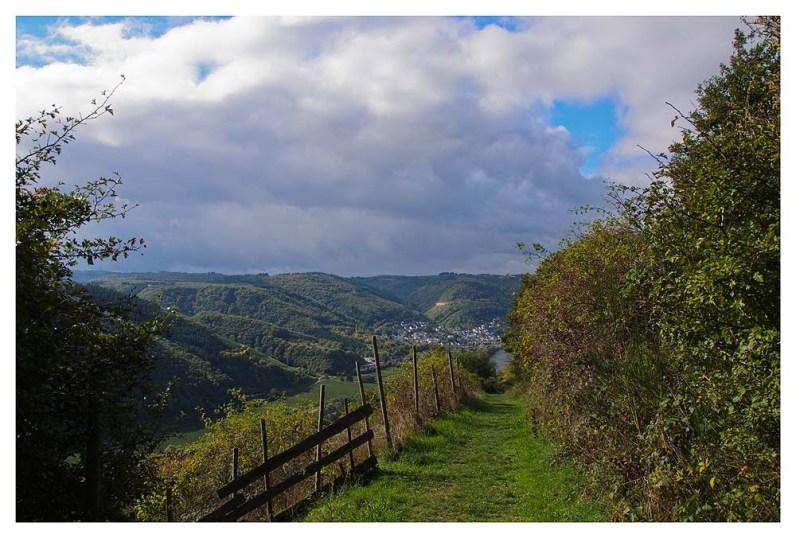 Weiche Wiesenpfade führen mich Richtung Cochem