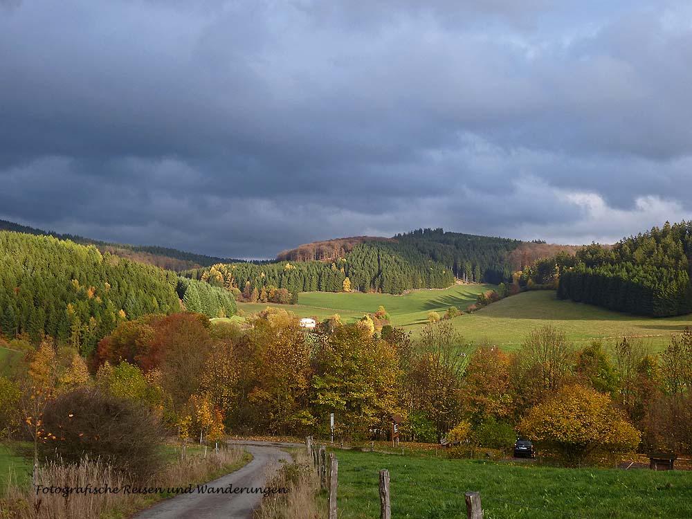 Die Sonne stellt sich immer tiefer und zaubert die Herbstfarben in ein so wunderschönes Licht