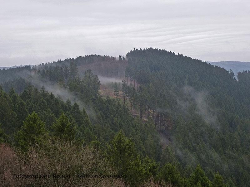 Nebel über den Wäldern
