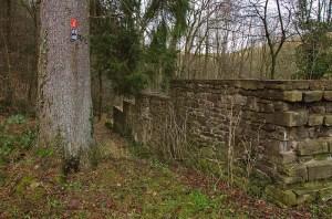Grafen_und Moenchsweg (10)