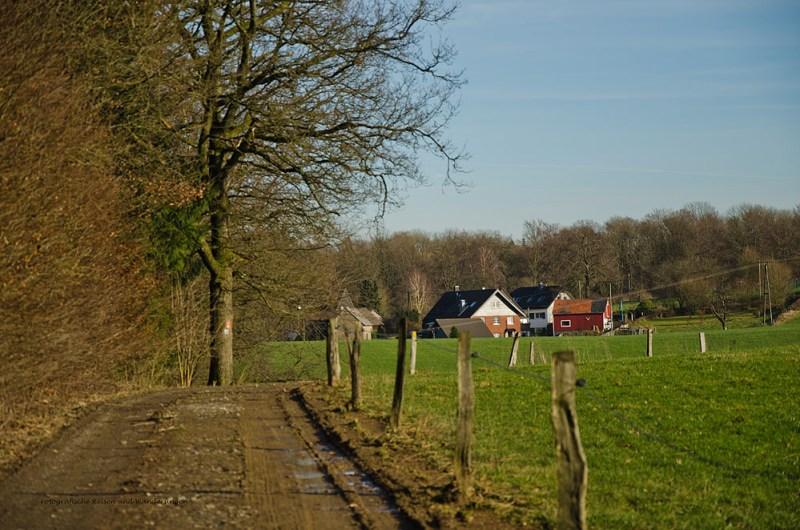Heimatweg (98)