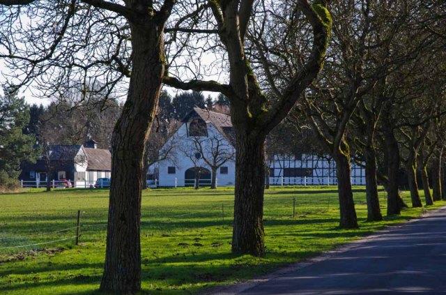 Moenchweg (75)