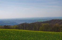 TraumpfadEhrenburg (122)