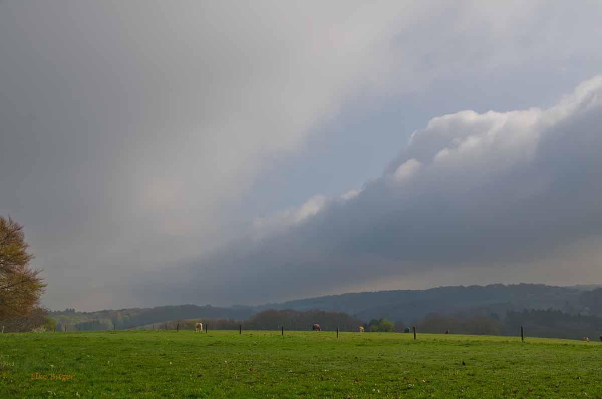 Mühlen und Bäche im Eifgenbachtal (15)