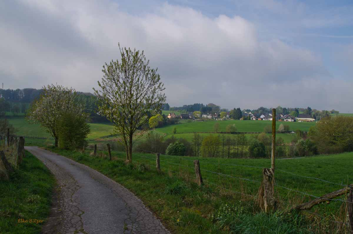 Mühlen und Bäche im Eifgenbachtal (38)