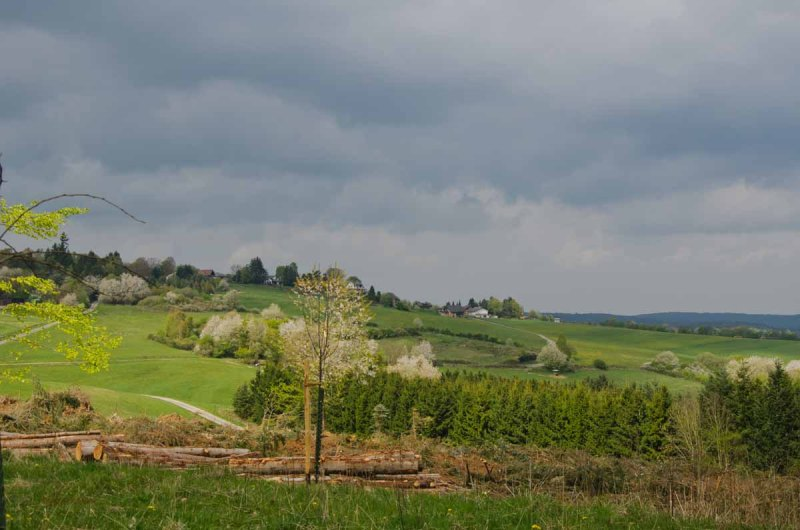 PanoramawegLind (57)