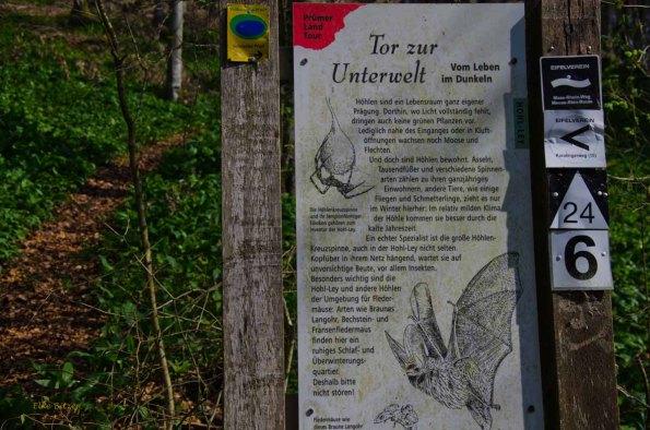 Schoenecker Schweiz (37)