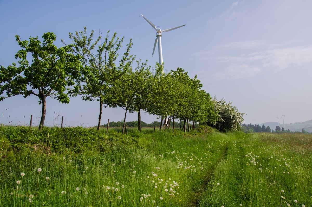 Wiesenweg - Von Hof zu Hof - Alles BIO auf den Höfen im Windrather Tal