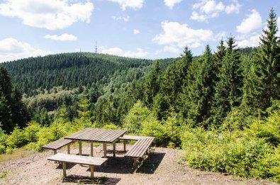 """Blick auf das Gebiet der ehemaligen Grube """"Sonnenberg"""" und Sonnenberger """"Rötsche"""" Der Fichtenwald versteckt die geschichtlichen Reste"""