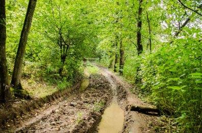 Der Kräuterweg