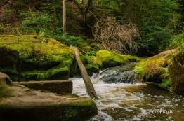 irrlerwasserfalle-15