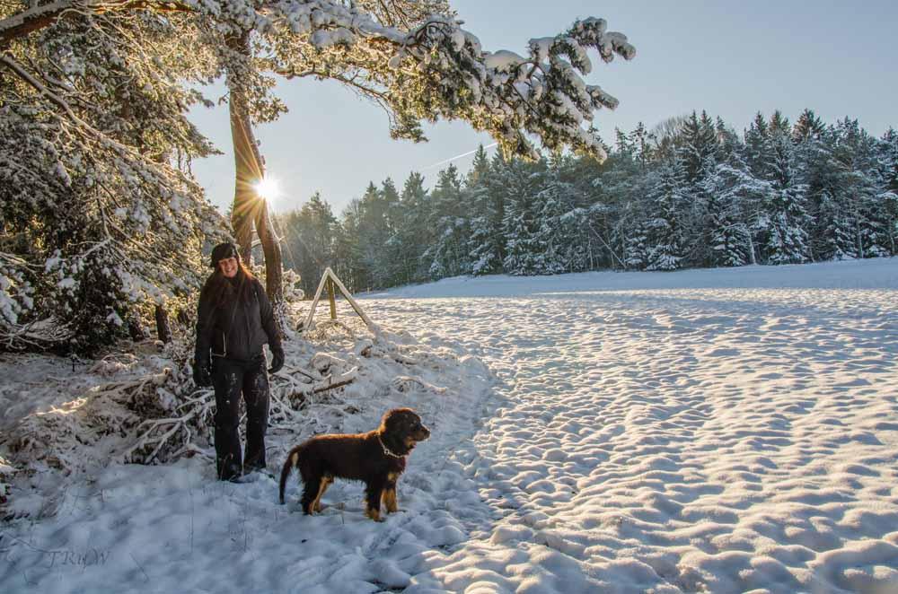 Wintermärchen in den Wacholderheiden bei Mirbach