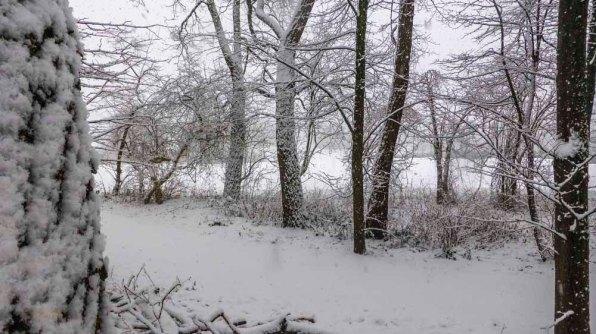 2015 01 24_Homezone im Schnee_00261