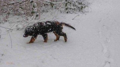 2015 01 24_Homezone im Schnee_0031