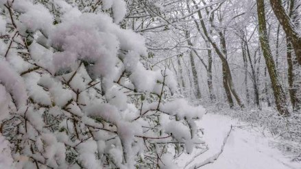 2015 01 24_Homezone im Schnee_00351