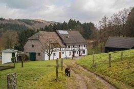 Lindlar_Bergische Schweiz_0046