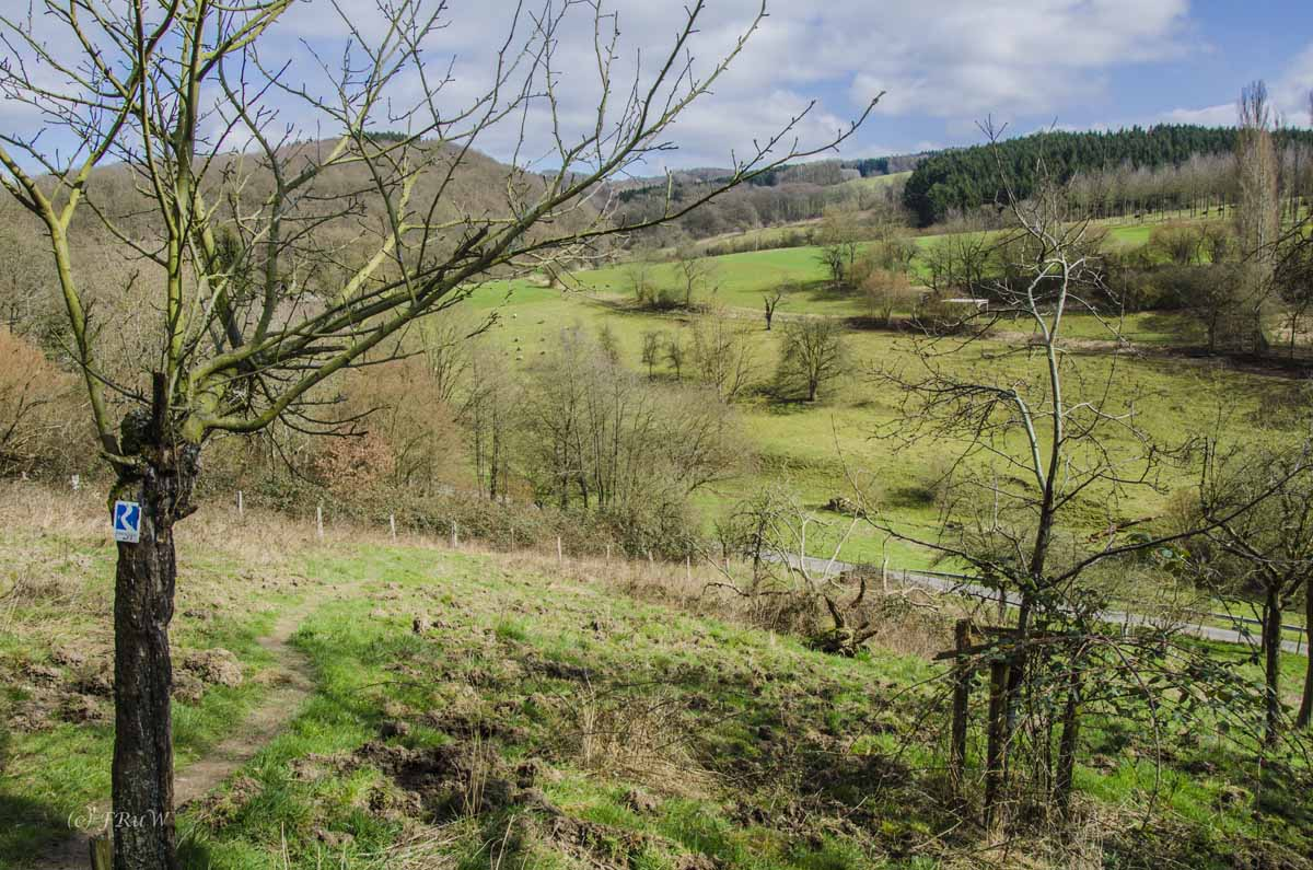 Limesweg_0228